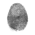 Fingerprint On Screen fingerprint free screen