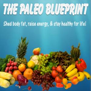 The Paleo Blueprint paleo
