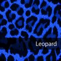 Cute! BlueLeopard WallPaper4