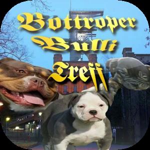 Bottroper Bulli Treff