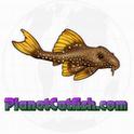 PlanetCatfish.com Quickfind