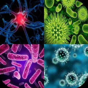 World Severe Diseases