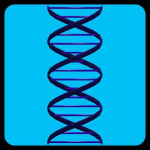 DNA Racer