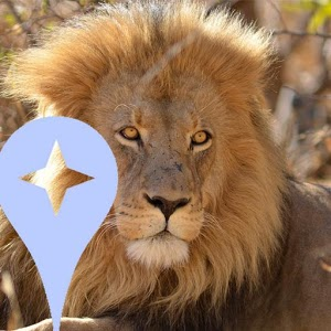 Kruger Park Local Guides guides local travel