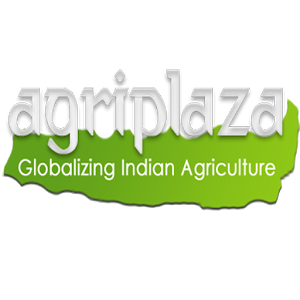 Agriplaza Grapes ID