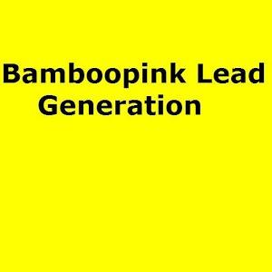 Bamboopink Lead Generation
