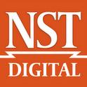 NST Digital fluke digital multimeter
