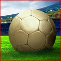 Football Manager 2012 Pro