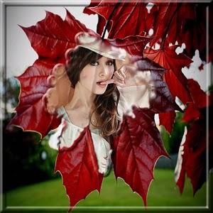 Leaf Photo Frames, Effects