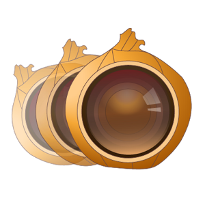 Onion Photo Skin