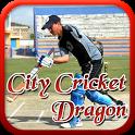 City Cricket Dragon