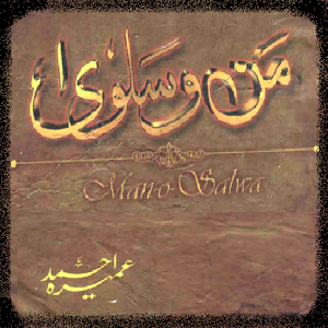 Mano o Salwa by Umaira Ahmed authoring