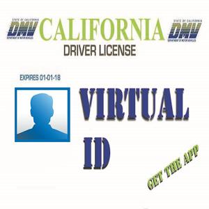 Virtual ID virtual