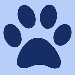 All About Pets - WPLG Local10