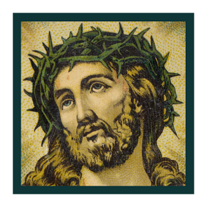 Daily Holy Bible Verses Free