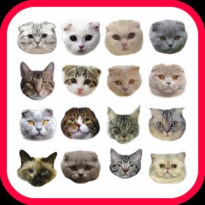 Sticker Cat deltek sticker