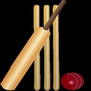 Live Cricket Scores Indo - Pak