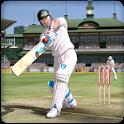 Lil Master Cricket