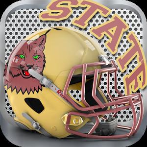 Texas State Football *FREE*