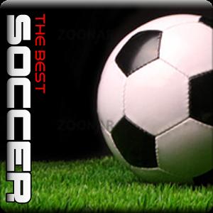 World Soccer Game