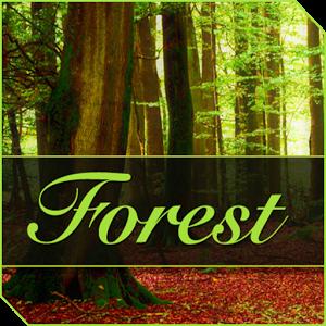 XPERIA™ Forest akkord xperia