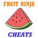 Fruit Ninja Cheats client fruit ninja