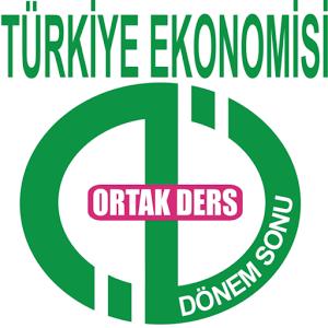 AÖF DÖNEMSONU TÜRKİYE EKONOMİ.