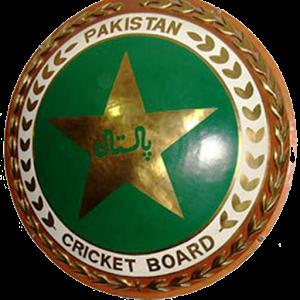 Pak Cricket, Best Cricket Game