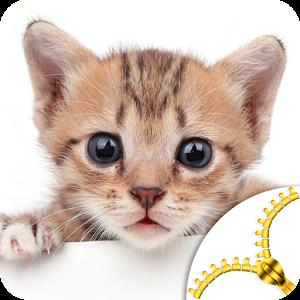 Kittens Lock Screen