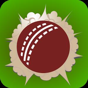 Smash and Slog Cricket