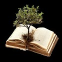 Scripture Mastery App scripture memory