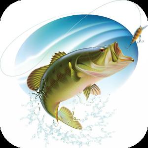 Bass Fishing rapala pro bass fishing