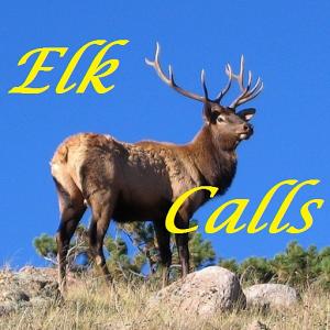 Elk Calls HD calls
