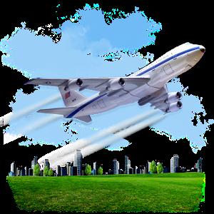 Flight Sim (Pro)