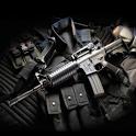 Guns project