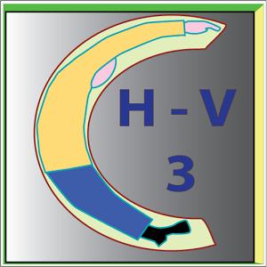 HocVan3