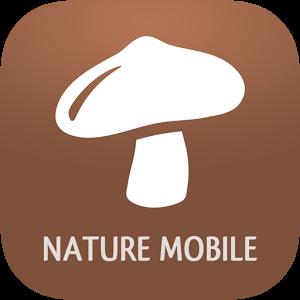 iKnow Mushrooms 2 PRO